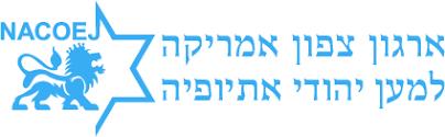 ארגון צפון אמריקה למען יהודי אתיופיה